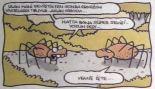 yigit_ozgur_karadul