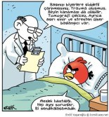 erdil yaşaroğlu - angry birds