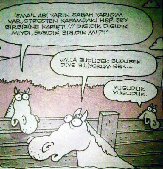 digidik-digidik-yigit-ozgur Karikatür