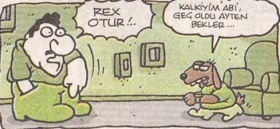 rex-otur-yigit-ozgur Karikatür